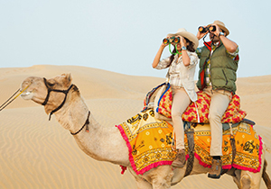 Hire Car and Driver Service From Delhi To Rajasthan Tour Packages